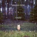 Daisy_(album)