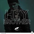 Avicii_Hey_Brother