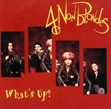 4_Non_Blondes_Whats_Up
