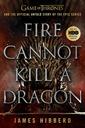 Fire_Cannot_Kill_A_Dragon_Book